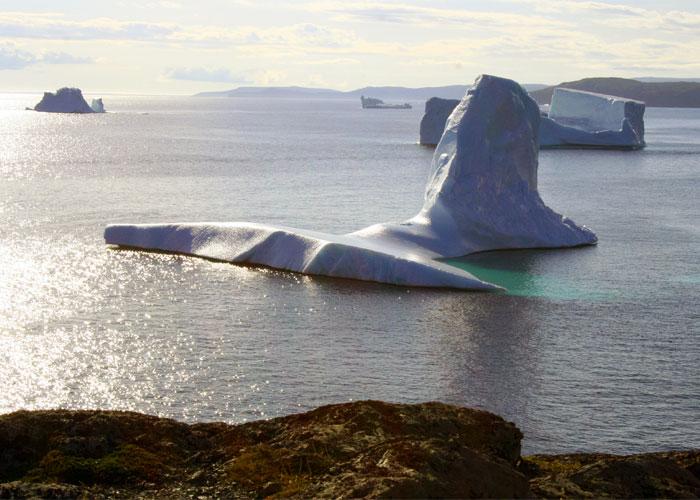 Icebergs in Goose Cove